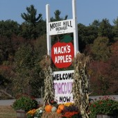 Wordless Wednesday - Mack's Apples