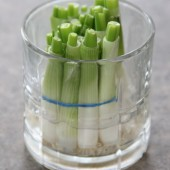 Kitchen Tip: Green Onions