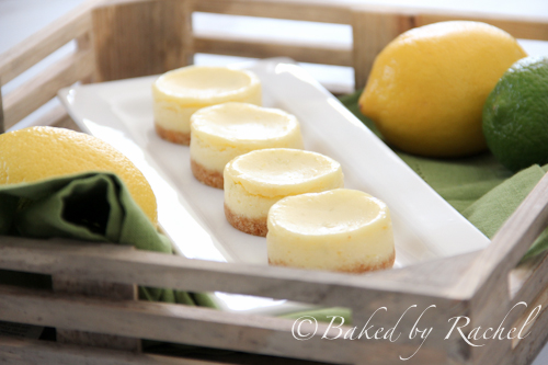 Pics Photos - Mini Lemon Lime Cheesecakes For A Surprise Virtual ...