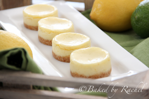 bundt cakes portuguese mini lemon orange cakes lemon cheesecake in a ...