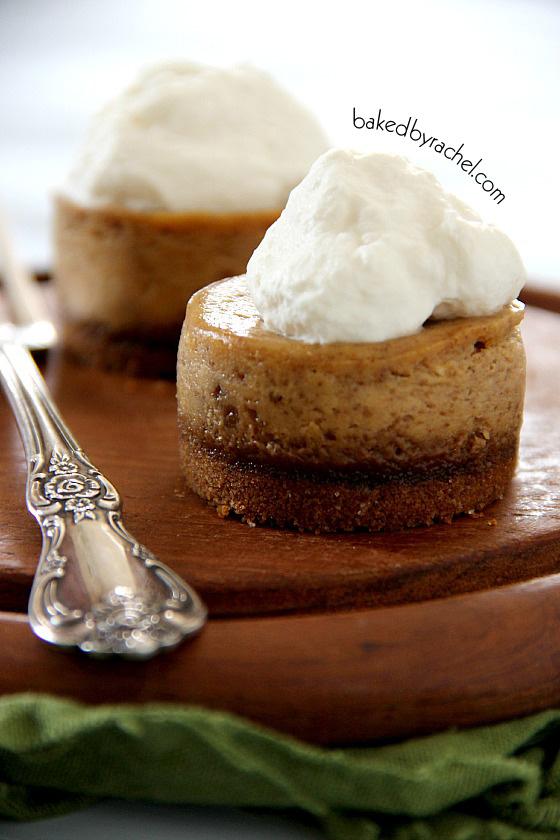 Mini Pumpkin Cheesecakes with Gingersnap Crust Recipe from bakedbyrachel.com