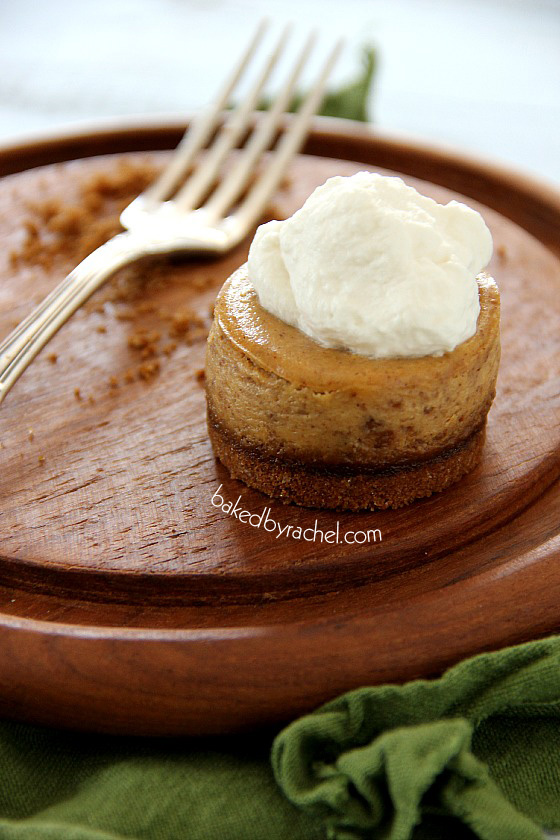 Mini Pumpkin Cheesecakes with Gingersnap Crust Recipe from bakedbyrachel.com