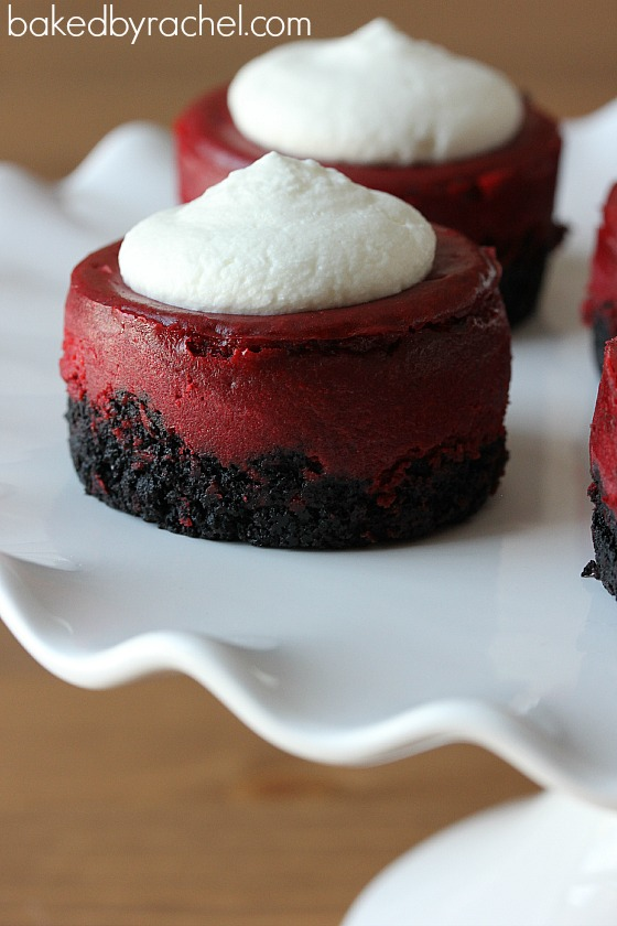 Mini Red Velvet Cheesecake Recipe from bakedbyrachel.com