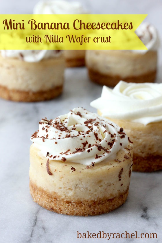 Mini Banana Cheesecakes with Nilla Wafer Crust Recipe from bakedbyrachel.com