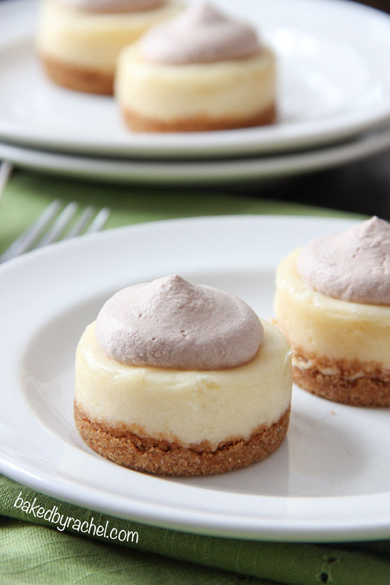 Mini Baileys Cheesecakes with Chocolate Whipped Cream Recipe from bakedbyrachel.com