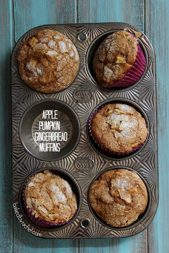 Apple Pumpkin Gingerbread Muffin Recipe from bakedbyrachel.com