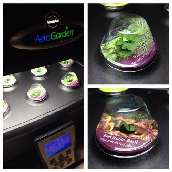 Aero Garden - bakedbyrachel.com