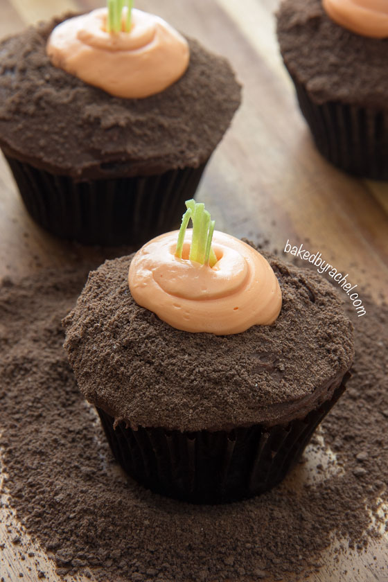 Moist chocolate carrot patch cupcakes! A fun and festive Spring treat! | bakedbyrachel.com