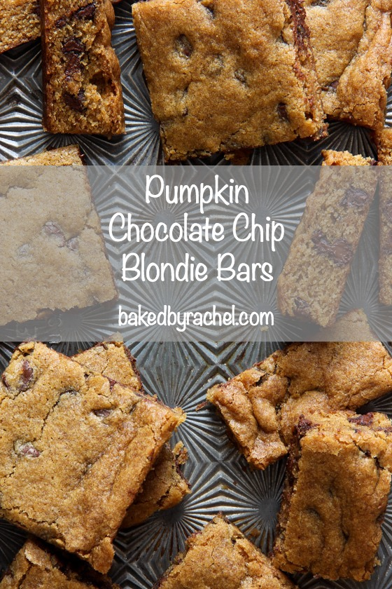 Pumpkin Chocolate Chip Blondie Bar Recipe from @bakedbyrachel An egg free recipe!