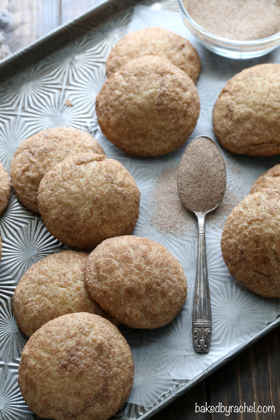 Light and fluffy apple butter snickerdoodle cookie recipe from @bakedbyrachel