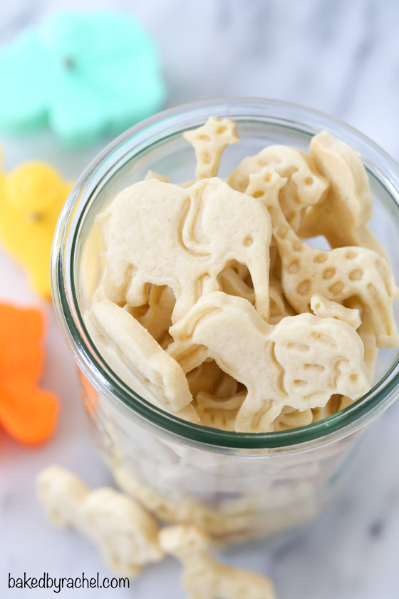 Homemade shortbread animal cracker cookie recipe from @bakedbryachel